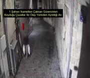 FAILI MEÇHUL - Güvercin Hırsızları Kameradan Kaçamadı