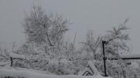 Kar, Gercüş'ü Beyaza Bürüdü