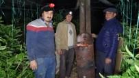 Antalya'da Üreticinin Don Nöbeti Devam Ediyor
