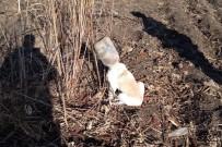 Başını Bidona Sıkıştıran Köpeği İtfaiye Kurtardı