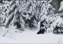 HABITAT - Karla Kaplı Ormanda Drone İle Geyikleri Böyle Görüntülediler