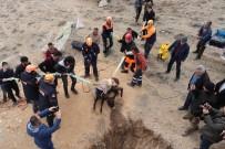 Kuyuya Düşen 4 Aylık Hamile Eşeği AFAD Kurtardı