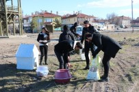 Üniversite Öğrencilerinden Sokak Hayvanlarına 'Sıcak Bir Yuva' Projesi