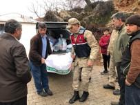 TAŞKALE - Jandarma Ekiplerinden Depremzedelere Yardım