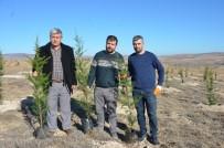 Emekli Maaşıyla 200 Bine Yakın Fidanı Toprakla Buluşturdu