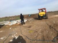 VİRANŞEHİR - Viranşehir Belediyesi'nden İlaçlama Çalışması