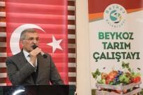 BILIM ADAMLARı - Beykoz'un Tarım Varlığı 'Beykoz Tarım Çalıştayı'nda Ele Alındı