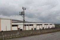 PEŞİN ÖDEME - Diyarbakır'daki İkinci Çiftlik Bank Vakası Mağdurları Yardım Bekliyor