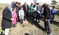 Edirne'de, 21 Okula 300 Hünnap Fidanı Dikilecek