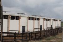 PEŞİN ÖDEME - İkinci Çiftlik Bank Vakası Mağdurları Yardım Bekliyor