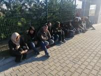 ZEYTINLIK - Çanakkale'de 43 Kaçak Göçmen Yakalandı