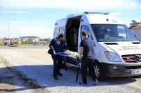 SALDıRGANLıK - Hayvan Ambulansı İle 2019 Yılında 9 Bin İhbara Müdahale Edildi