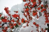 TAŞIMALI EĞİTİM - Kar, Simav'da Güzel Manzaralar Oluştu