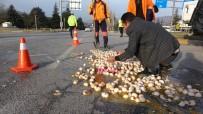 Kolilerce Yumurta Yola Döküldü, Ekipler Temizlemek İçin Seferber Oldu