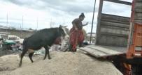 AŞIRI YAĞIŞ - Mersin'de Sel Tahliyesi