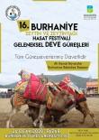 ORGANIK TARıM - Burhaniye Zeytin Ve Zeytinyağı Festivaline Hazırlanıyor