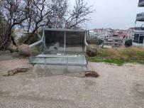 Erdek'te Fırtına Ağaçları Kırdı, Otobüs Duraklarını Devirdi