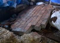 ŞİDDETLİ RÜZGAR - Silivri'de Şiddetli Rüzgarda Yıkılan Duvarın Altında Kalan 2 Hayvan Telef Oldu