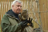 MEDIKAL - Tedavileri Tamamlanan Güvercin Ve Şahin Doğaya Salındı