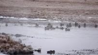 HAVA SICAKLIKLARI - Ardahan'da Düşen Kırağı Sonrası Görsel Şölen