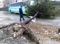 Bandırma'da Şiddetli Fırtınanın Yaraları Sarılıyor