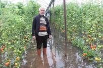 GÜBRE - Sel Mersin'de Tarım Arazilerini Vurdu