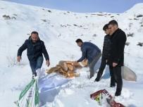 SUBAŞı - Ahlat'ta Yaban Hayvanları İçin Doğaya Yem Bırakıldı