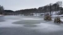 KANYON - Göktepe Göleti Buz Tutu