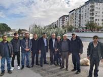 Şehzadeler Ziraat Odasından Üreticiye 35 Bin Zeytin Fidanı