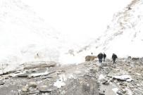 ÇIĞ DÜŞMESİ - Çatak'ın Dünya İle Bağlantısı Kesildi