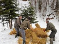 KIŞ MEVSİMİ - Kar Yağışı Nedeniyle Aç Kalan Hayvanlara Yem Bırakıldı