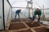 İNİSİYATİF - Mezitli Gönüllü Serası İhtiyaç Sahipleri İçin Üretiyor