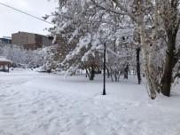 Ağrı'da Kar Yağışı Ve Soğuk Hava Hayatı Olumsuz Etkiliyor
