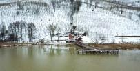 ALI YıLDıZ - Kuş Cenneti Efteni Gölü Drone İle Görüntülendi