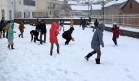 HALK EĞİTİM - Sincik'te Okullar Tatil Edildi