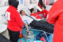 ALI YıLDıZ - Beyoğlu'ndan Kan Bağışı Kampanyasına Tam Destek