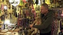 BALCı - Kedi 'Behlül'ün Bacağındaki Tümör Esnafın Topladığı Yardımla Alındı