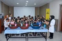 YERLİ TOHUM - Konya'da, 'Yerli Tohum Milli Tarım' Projesi