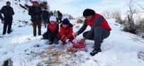 YAŞAM MÜCADELESİ - Tunceli'de Yaban Hayvanları İçin Doğaya Yem Bırakıldı