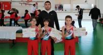GENÇLİK VE SPOR BAKANLIĞI - Karaman Jimnastik Ve Badminton Analig Takımları Bir Üst Turda