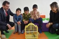 SOSYAL BELEDİYECİLİK - Öğrenciler Muhabbet Kuşu İle Rehabilite Olacak