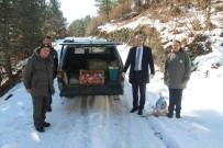 DENIZ PIŞKIN - Tosya'da Yaban Hayatı İçin Doğaya Yem Bırakıldı