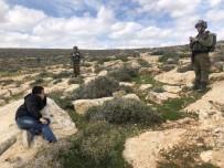 İSRAIL - İsrail Güçleri, Filistinlilerin Zeytin Ekmesini Engelledi