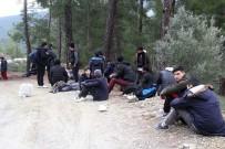 SARIYER - Seydikemer'de 32 Düzensiz Göçmen Yakalandı