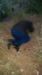 HELIKOPTER - Büyükbaş Hayvanları Hastalanan Muhtar İntihar Etti