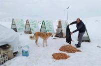 EDREMIT BELEDIYESI - Edremit Belediyesi İle Ahbap Derneği'nden Sokak Hayvanlarına Sıcak Yuva