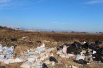 ÖĞRETİM ÜYESİ - Bir Zamanlar Kuş Cenneti Olan Yamansaz Atık Ve Kirlilik Tehdidi Altında