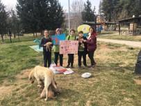 İSTİKLAL - Öğrencilerden Sokak Hayvanlarına Destek