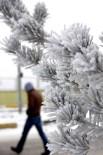 METEOROLOJI - Bayburt'ta Kar Yağışı Yerini Soğuk Havaya Bıraktı