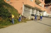 ÇEVRE TEMİZLİĞİ - Nazilli'de Bahar Temizliği Yapıldı